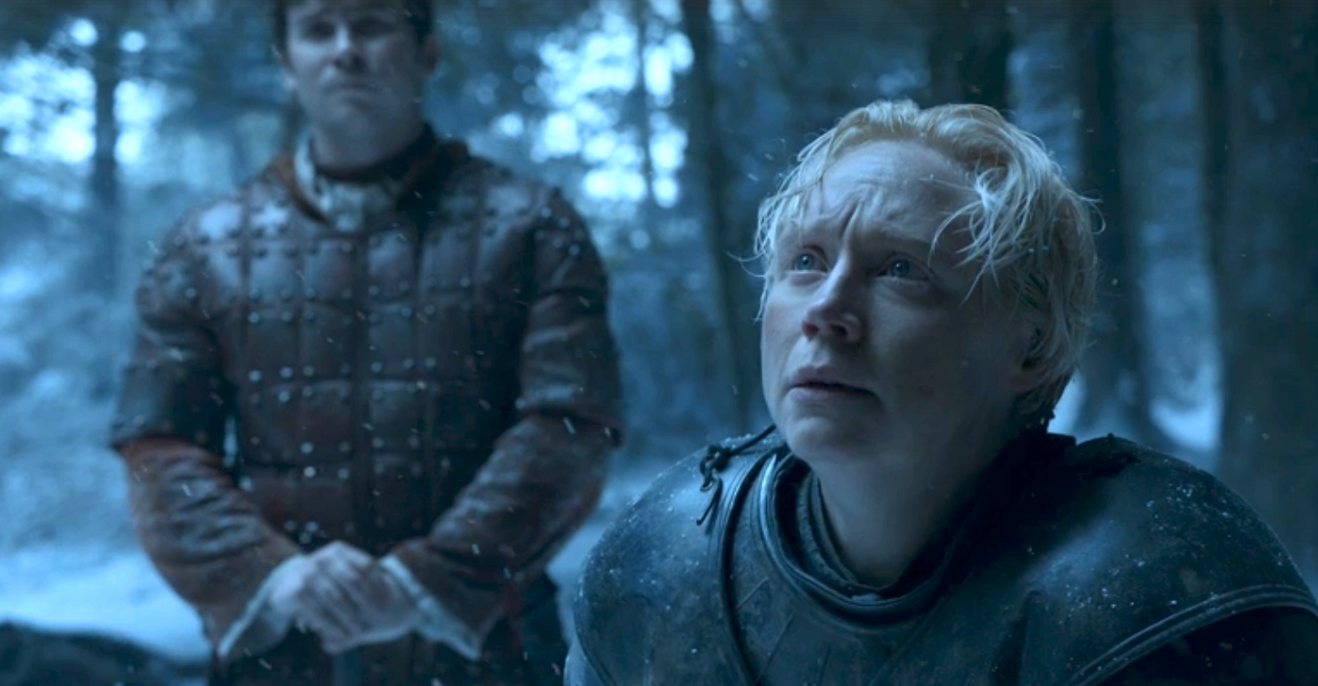 Brienne pledges her service to Sansa Stark